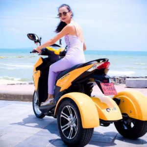 Ozimoto – Trikes and Sidecars – Trikes and Sidecars